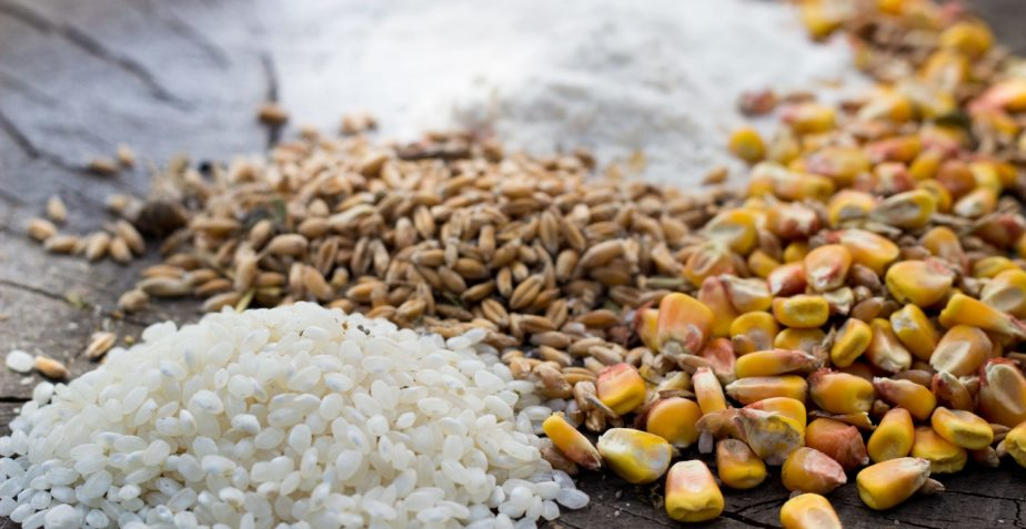 How to Choose a Grain